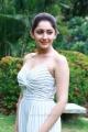 Actress Sayyeshaa Saigal @ Ghajinikanth Movie Press Meet Stills