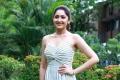 Actress Sayyeshaa @ Ghajinikanth Movie Press Meet Stills