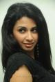 Actress Gayatri Iyer at Gola Gola Movie Platinum Disc Function Stills