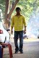 Actor Udhayanidhi Stalin in Good Evening Movie Stills