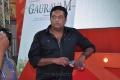 Prakash raj @ Gouravam Audio Launch at IPL Match Photos