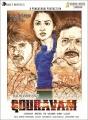Allu Sirish, Yami Gautam, Prakash Raj in Gouravam Movie Posters