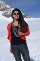 Actress Nayanthara in Greeku Veerudu Latest Stills