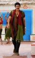 Actor Nagarjuna in Greeku Veerudu Movie Pictures