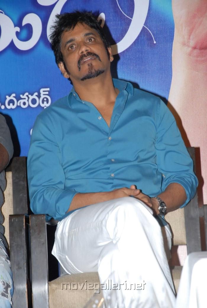 Actor Nagarjuna at Greeku Veerudu Platinum Disc Function Stills
