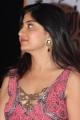 Guest Movie Audio Launch Pictures