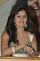 Actress Isha Talwar at Gunde Jaari Gallanthayyinde Movie Press Meet Stills