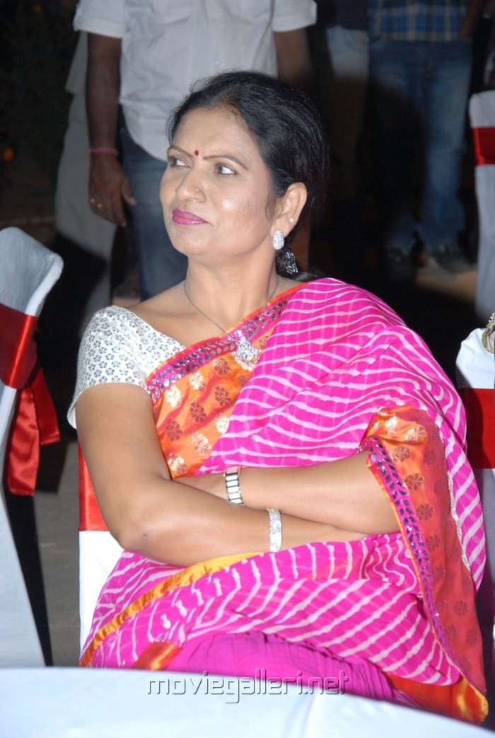 MLA DK Aruna at Gundello Godari Movie Audio Launch Stills