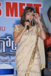 Manchu Lakshmi Prasanna at Gundello Godari Movie Success Meet Photos