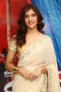 Actress Natasha Singh @ Gypsy Movie Press Meet Photos