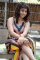 Telugu Actress Hameeda Khatoon Hot Stills