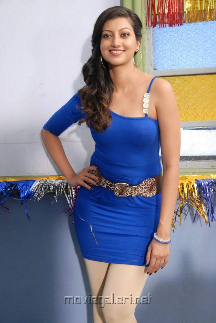 Actress Hamsa Nandhini Hot Photoshoot Pics in Blue Dress