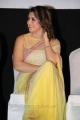 Actress Hansika Motwani Saree Photos @ Aambala Audio Launch