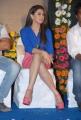 Actress Hansika Motwani Hot Photos in Blue & Pink Dress
