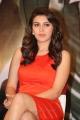 Actress Hansika Motwani Hot Photos in Orange Tight Skirt