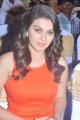 Hansika Motwani Hot Photos in Orange Dress @ Singam 2 Press Meet