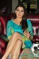 Actress Hansika Motwani Latest Hot Photos at Something Something PM