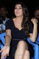 Tamil Actress Hansika Motwani Latest Hot Pics