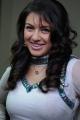 Hansika Motwani Cute Pictures, Actress Hansika Motwani Latest Cute Photos