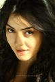 Beautiful Hansika Motwani Latest Photoshoot Pics