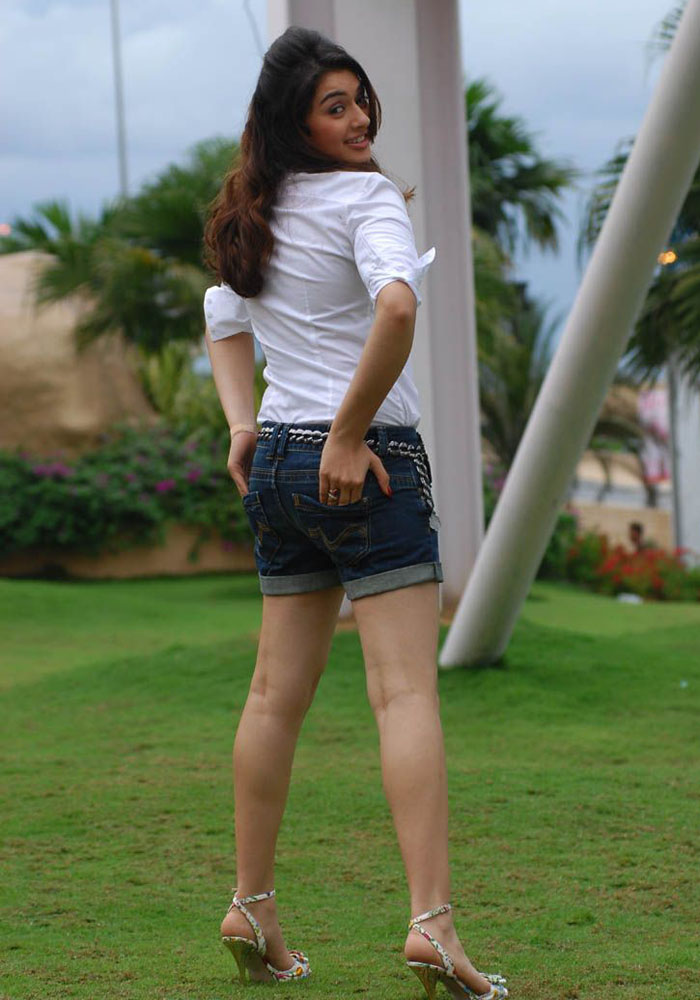 Picture 466571  Tamil Actress Hansika Motwani Latest Hot Images  New Movie Posters-5534