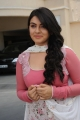 Hansika Motwani in Oh My Friend Pics