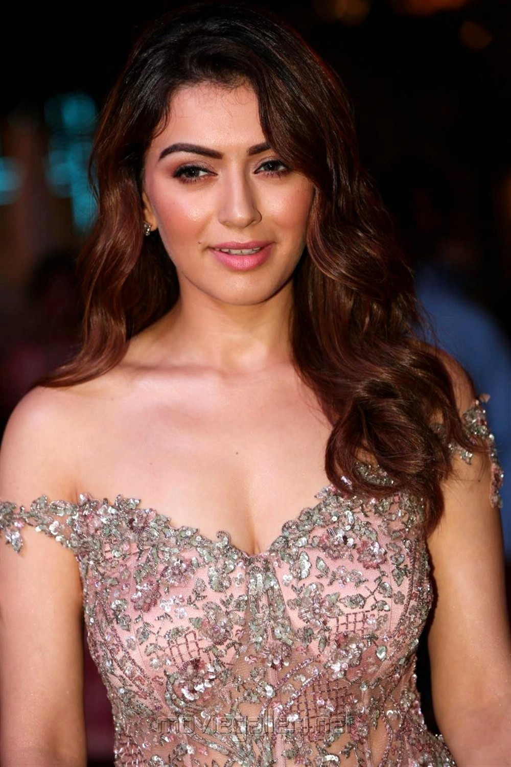 Actress Hansika Motwani Hot Pics @ SIIMA Awards 2018 Red Carpet (Day 1)
