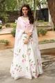 Tenali Ramakrishna Actress Hansika Motwani New Images