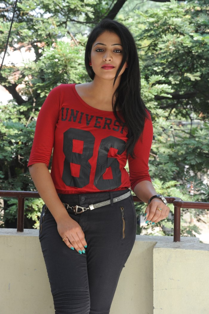 Telugu Actress Hari Priya Photos @ Ee Varsham Sakshiga Success Meet