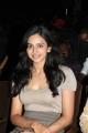 Rakul Preet Singh at Haridas Movie Audio Launch Photos