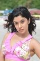 Actress Harika Bikini Hot Stills in Mr Rascal Movie