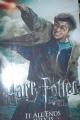 Harry Potter 7 Part 2 Premiere Show