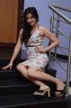 Telugu Actress Harshika Poonacha Hot Pictures
