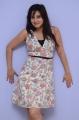Appudala Ippudila Heroine Harshika Poonacha in Mini Gown