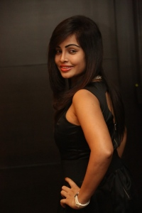 Actress Hashika Dutt Hot Photos @ Player Teaser Launch