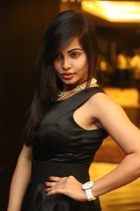 Hashika Dutt Hot Photos @ Player Poster Launch