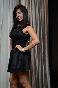 Actress Hashika Dutt Hot Photos @ Player Poster Launch