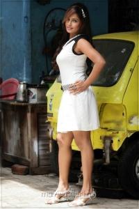 Tamil Actress Hasika Dutt Hot Photoshoot Stills