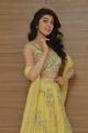 Actress Pranitha Subhash @ Hello Guru Prema Kosame Success Meet Stills