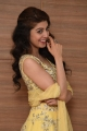 Actress Pranitha Subhash @ Hello Guru Prema Kosame Success Meet Stills