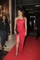 Priyanka Chopra @ Hello Hall Of Fame Awards 2013 Red Carpet Photos
