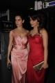 Kangana Ranaut, Priyanka Chopra @ Hello Hall Of Fame Awards 2013 Red Carpet Photos