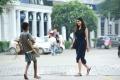 Heroine Kalyani Priyadarshan in Hello Movie Stills HD
