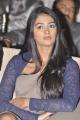 Actress Pooja Hegde at Santosham Film Awards 2012 Photos