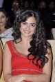 Actress Kriti Kharbanda at Santosham Film Awards 2012 Photos
