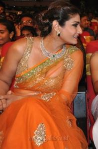 Heroine Raveena Tandon @ TSR TV9 National Film Awards for 2013-2014 Function Photos