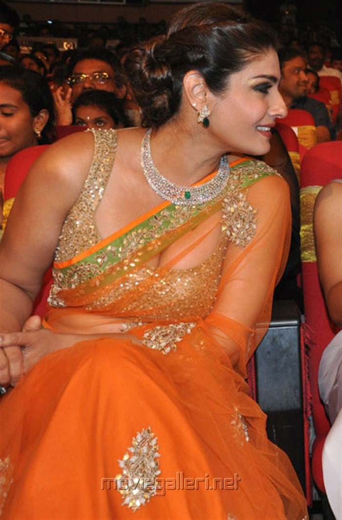 Heroine Raveena Tandon @ TSR TV9 National Film Awards for 2013-2014 Function Photos