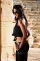 hot_anushka_shetty_new_pics_ragada_0087