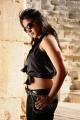 hot_anushka_shetty_new_pics_ragada_0224