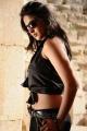 hot_anushka_shetty_new_pics_ragada_0996